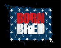 Born n Bred - Red White n Blue USA Stars Royalty Free Stock Photography