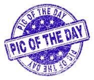 Grunge Textured PIC dnia znaczka foka ilustracji