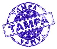Scratched Tampa Rectangle Stamp Stock Vector