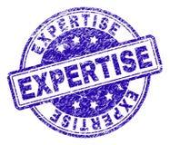 Grunge Textured wiedza specjalistyczna znaczka fokę ilustracji