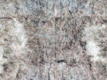 Grunge texturerade grå bakgrund för det abstrakta pappers- arket kopiera avst?nd Tappningpergament royaltyfri fotografi