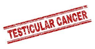 Grunge texturerade stämpelskyddsremsan för TESTICULAR CANCER stock illustrationer