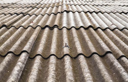 Grunge tile roof background Royalty Free Stock Image