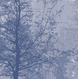 Grunge tree  background Royalty Free Stock Images
