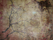 Grunge Tree Branches Abstract Background Stock Images