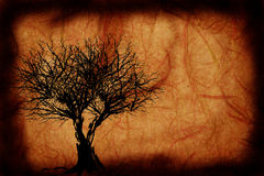 Grunge Tree design Stock Photography