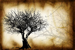 Grunge Tree design Royalty Free Stock Photos