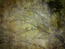 Grunge Tree Halloween Background Royalty Free Stock Photos