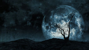 Grunge tree and moon background Royalty Free Stock Image