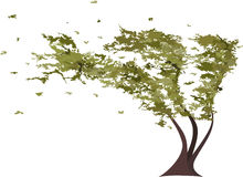 Grunge tree in the wind. Vector stock illustration