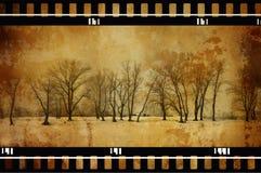 Grunge trees stock image