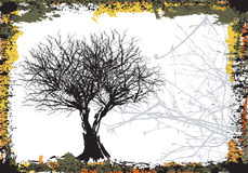 Grunge trees Stock Photos