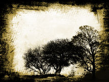 Grunge trees royalty free illustration