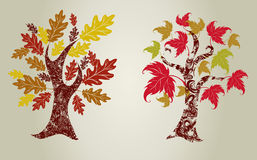 Grunge trees from leafs. Royalty Free Stock Photo
