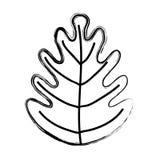 Grunge tropical leaf botany nature style. Vector illustration stock illustration