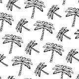 Grunge tropical palm nature tree background. Vector illustration stock illustration