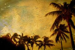 Grunge tropicale Immagine Stock