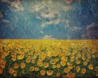 Grunge Ukraine flag Royalty Free Stock Image