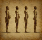 Grunge umano di perdita di peso Immagine Stock