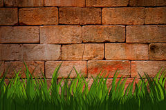 Grunge urban brick wall with green grass Royalty Free Stock Photos