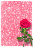Grunge used paper in scrapbooking style with roses Stock Image