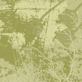 Grunge vector background in olive tones Stock Images