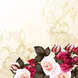 Grunge vector background with roses. Vector cute roses in vintage style for design Stock Photography
