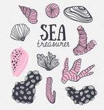 Grunge vector backgroung with sea treasures - corals, cockleshells, stones, seaweed. Vector illustration. Stock Photography