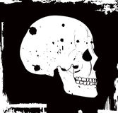 Grunge vector skull Stock Photo