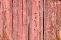 Grunge velho e textura de madeira vermelha clara resistida das pranchas da parede Fotos de Stock
