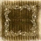 Grunge vintage background with floral Stock Images
