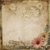 Grunge vintage background with flowers. Gorgeous vintage background  with flowers, and lace Royalty Free Stock Image