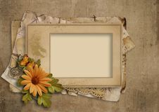 Grunge vintage background with old frame and flowers. Vintage textural background with old frame and beautiful flowers with place for photo and text royalty free stock photography
