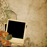 Grunge vintage background with polaroid-frame. Vintage background with beautiful flowers and lace, with place for photo and text Stock Photography