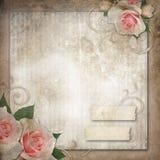 Grunge, vintage background  roses Stock Images