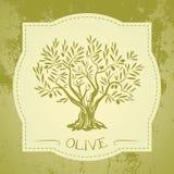 Grunge vintage label with olive tree Stock Image