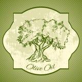Grunge vintage label with olive tree Stock Images