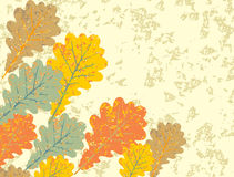 Grunge vintage oak leaves background Royalty Free Stock Photo