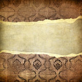 Grunge vintage wallpaper -trorn bannner Stock Photos