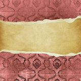 Grunge vintage wallpaper -trorn bannner Stock Images
