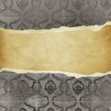 Grunge vintage wallpaper -trorn bannner Royalty Free Stock Photo