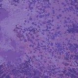 Grunge violet vector background Stock Images