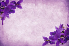 Grunge Violets Stock Photos