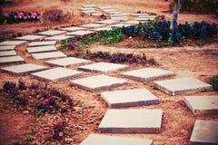 Grunge walk path Royalty Free Stock Image