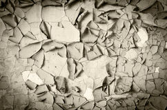 Grunge wall. Grunge texture - surface of an old crumbled wall Stock Photography