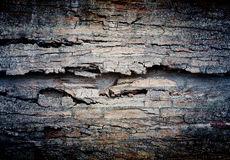 Grunge wall. Abstract the old grunge wall for background royalty free stock images