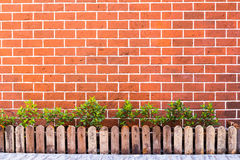 Grunge wall background with flowers. Stock Photos