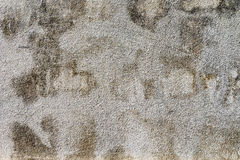 Grunge wall background Royalty Free Stock Photography