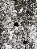 Grunge wall creaks textured background. royalty free stock image