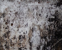 Grunge wall. Grungy wall for background with dark accent Royalty Free Stock Image